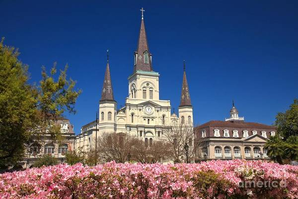 Photograph - Jackson Square Spring Time by Adam Jewell