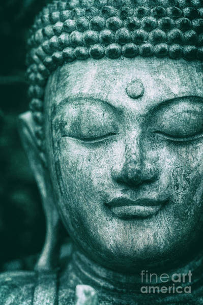 Buddhism Photograph - Jade Buddha by Tim Gainey