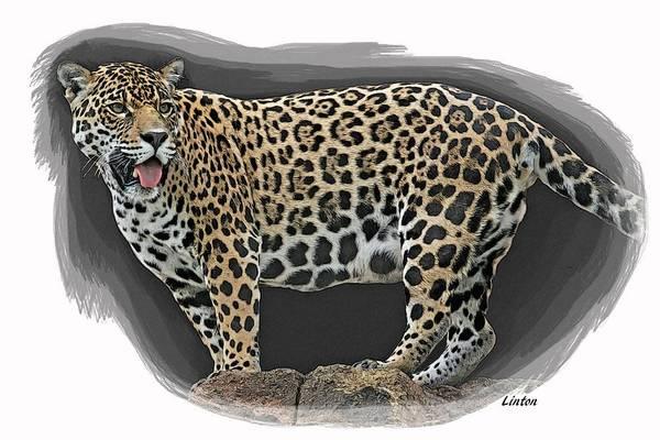 Digital Art - Jaguar 16 by Larry Linton
