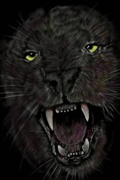 Digital Art - Jaguar by Darren Cannell