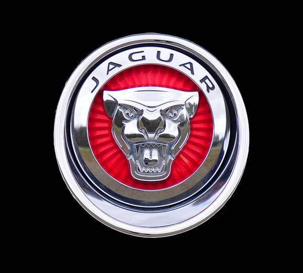 Photograph - Jaguar Emblem by Ericamaxine Price