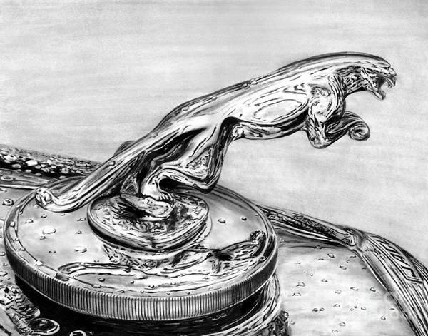 Mark Iv Wall Art - Drawing - Jaguar Hood Emblem     by Peter Piatt