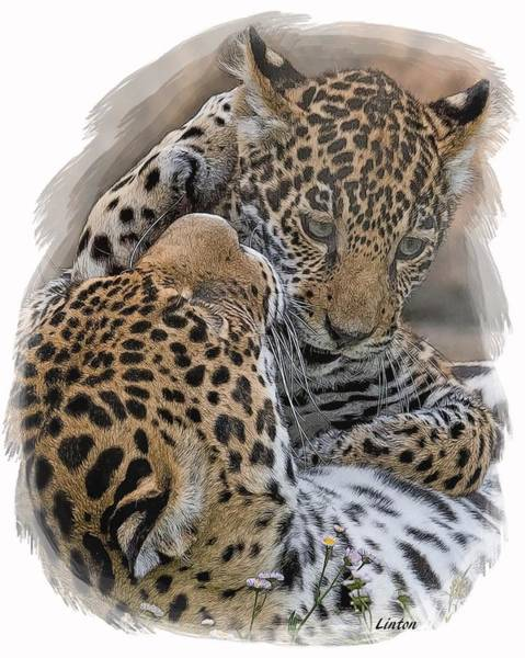 Digital Art - Jaguar Mother And Cub 4 by Larry Linton