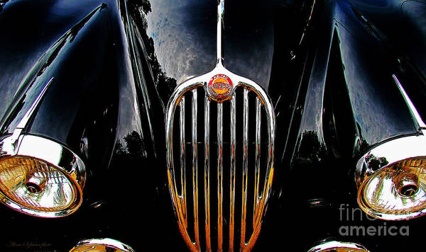 Photograph - Jaguar Old Automobile by Alexa Szlavics