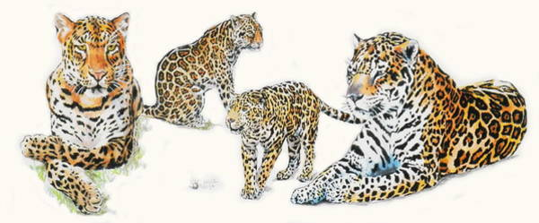 Mixed Media - Jaguar Wrap by Barbara Keith