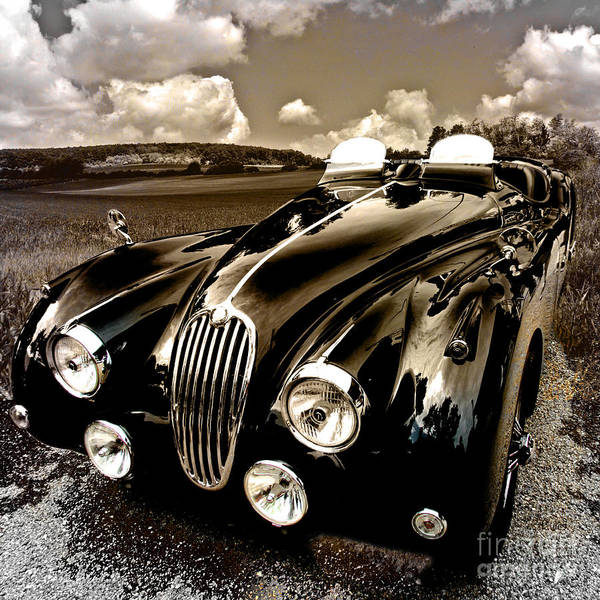 Photograph - Jaguar Xk 140 by Alexa Szlavics
