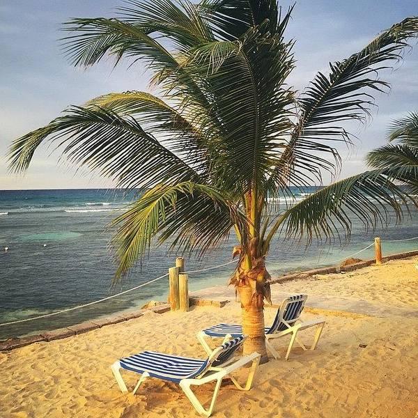 Jamaica Photograph - #jamaica #beach by Tammy Wetzel