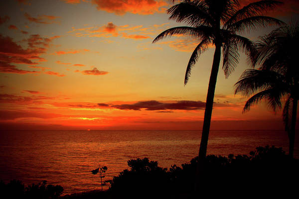 Wall Art - Photograph - Jamaican Sunset by Kamil Swiatek