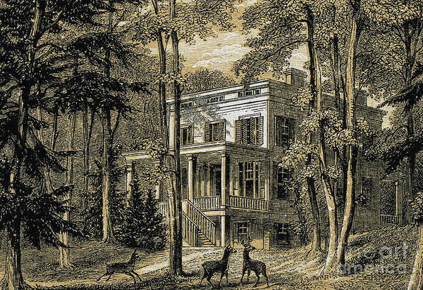 Woodland Drawing - James John Audubon's Home Minniesland by William Rickarby Miller