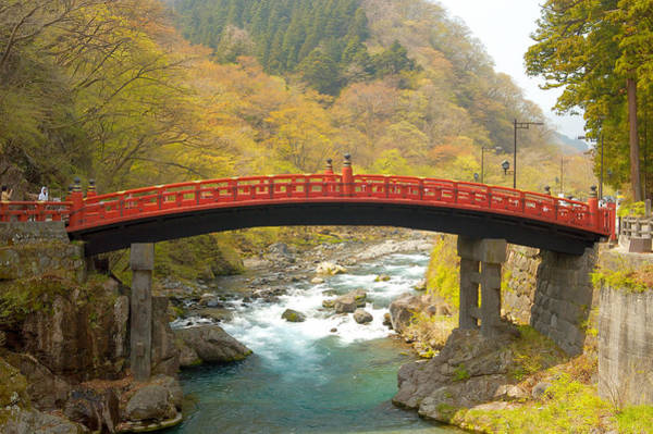 Photograph - Japanese Bridge by Sebastian Musial