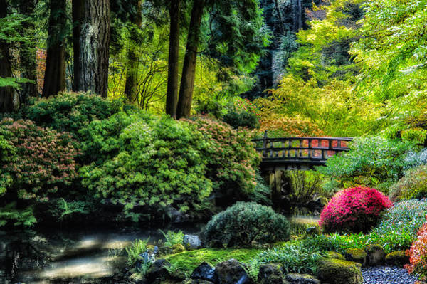 Photograph - Japanese Garden by Harry Spitz