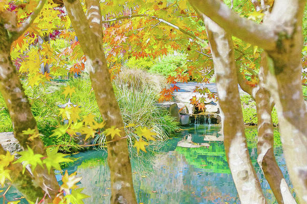 Digital Art - Japanese Garden Pond by Keith Smith