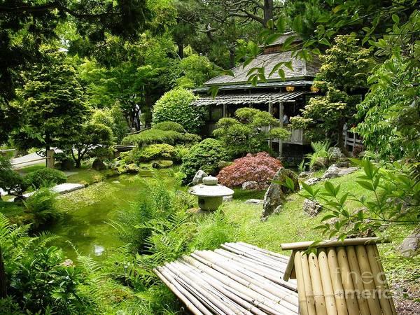 Photograph - Japanese Garden Teahouse by Carol Groenen