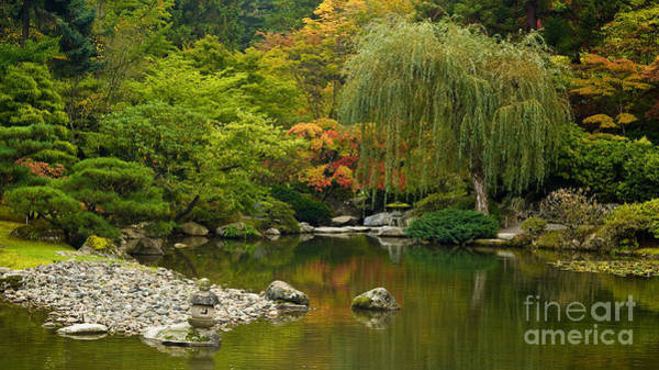 Arboretums Photograph - Japanese Gardens by Mike Reid