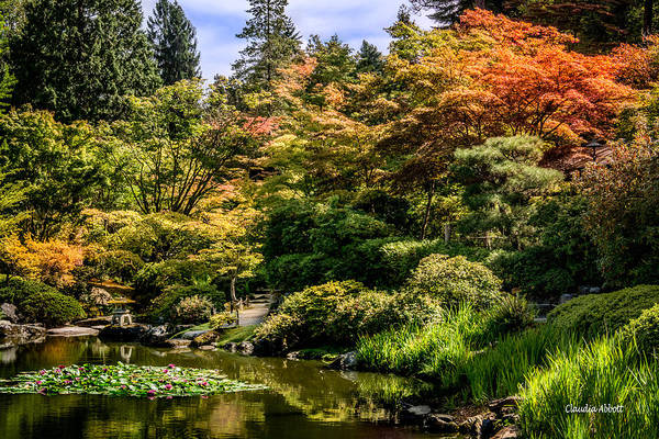 Photograph - Japanese Gardens Seattle by Claudia Abbott