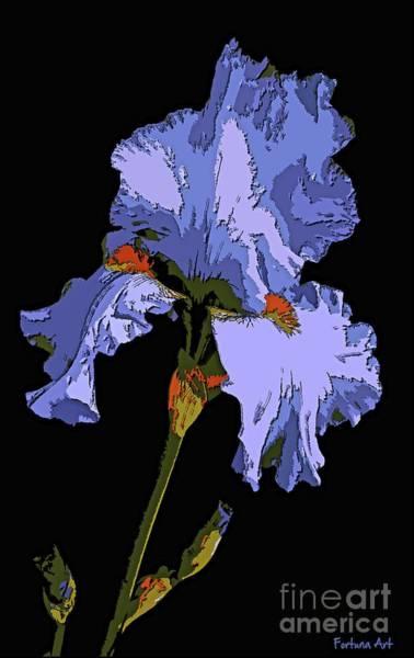 Wall Art - Painting - Japanese Iris-blue Beauty by Dragica Micki Fortuna