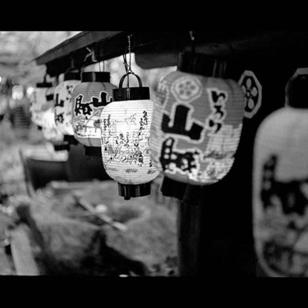 Japan Photograph - Japanese Lanterns. #japan #japanese by Alex Snay