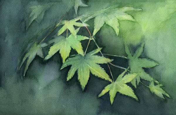 Blooming Tree Painting - Japanese Maple  by Olga Shvartsur