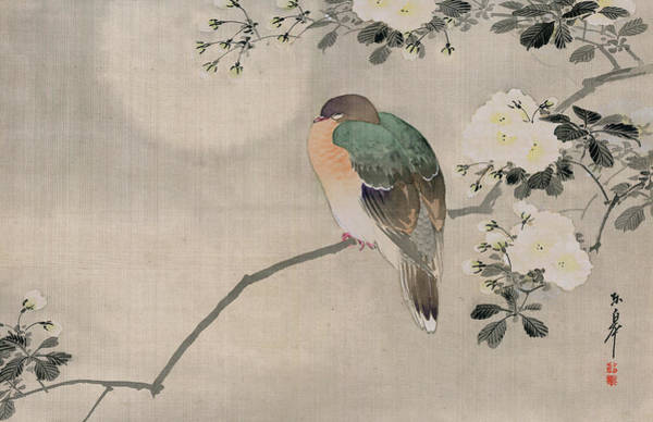 White Feathers Painting - Japanese Silk Painting Of A Wood Pigeon by Japanese School