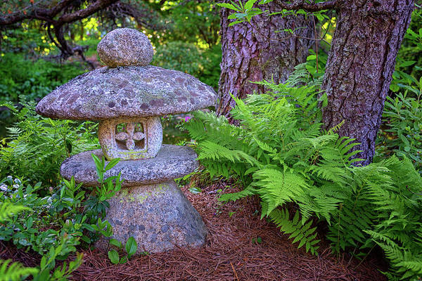 Photograph - Japanese Stone Lantern In Asticou Garden by Rick Berk