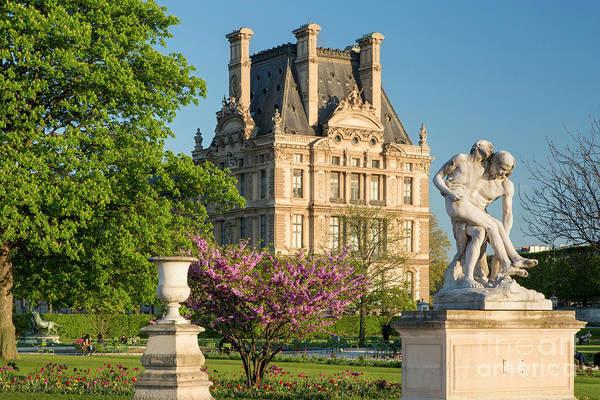 Jardin Des Tuileries Photograph - Jardin Des Tuileries - Paris by Brian Jannsen