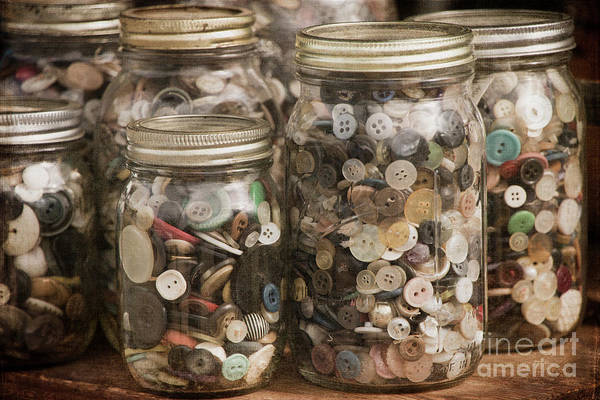 Photograph - Jars Of Vintage Buttons by Teresa Wilson