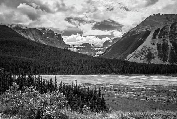 Wall Art - Photograph - Jasper National Park Alberta Canada Bw by Joan Carroll