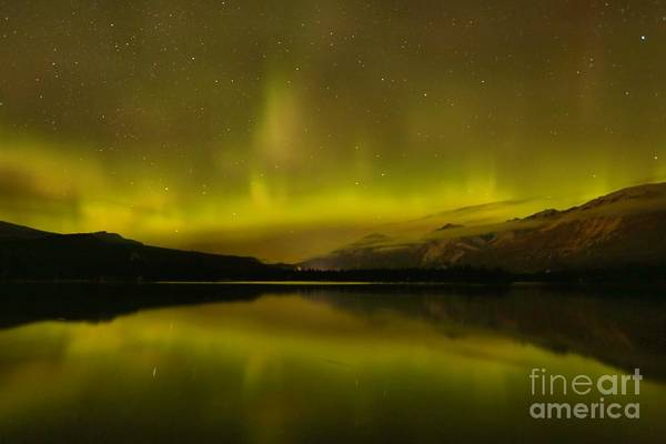 Photograph - Jasper National Park Dark Sky Show by Adam Jewell