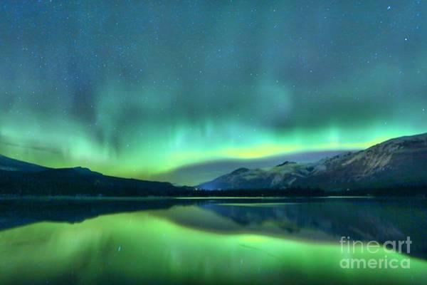 Photograph - Jasper Shades Of Green by Adam Jewell