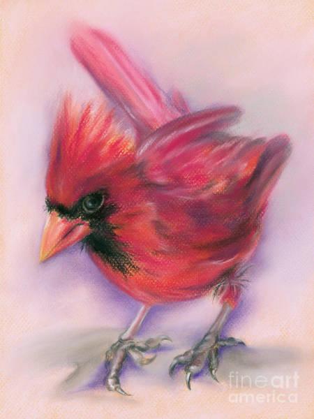 Pastel - Jaunty Redbird Cardinal by MM Anderson