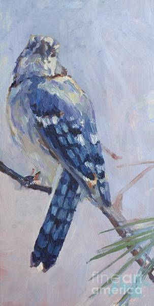 Painting - Jay by Patricia A Griffin
