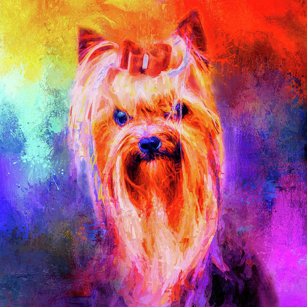 Mixed Media - Jazzy Yorkshire Terrier Colorful Dog Art By Jai Johnson by Jai Johnson