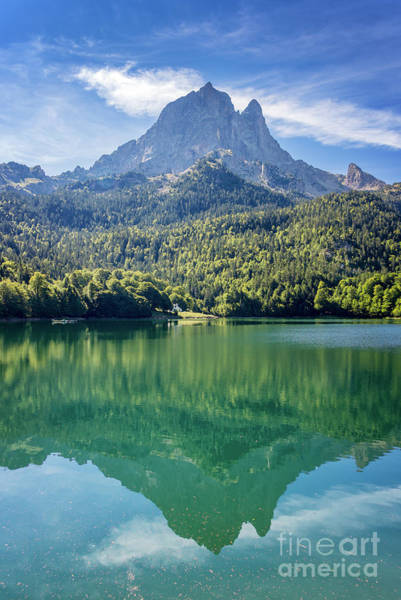 Pyrenees Photograph - Jean Pierre by Delphimages Photo Creations