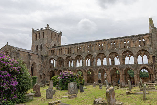 Photograph - Jedburgh Abbey 2169 by Teresa Wilson