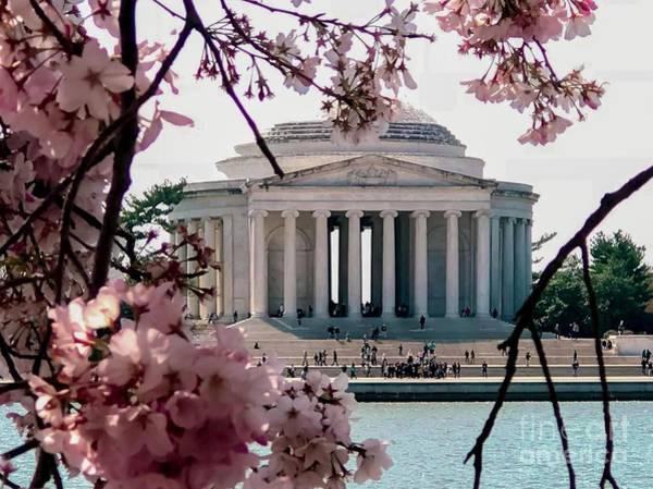 Thomas Jefferson Photograph - Jefferson Memorial by Baltzgar