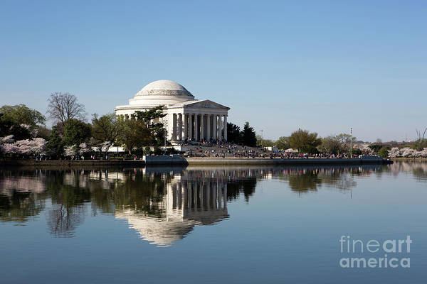 Photograph - Jefferson Memorial Cherry Blossom Festival by Steven Frame