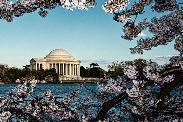 Photograph - Jefferson Memorial In Spring by Christopher Holmes