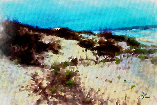 Photograph - Jekyll Island Beach  Ga. by Joan Reese