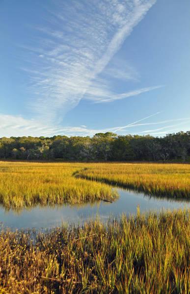 Jekyll Island Marsh High Tide And Sky Art Print