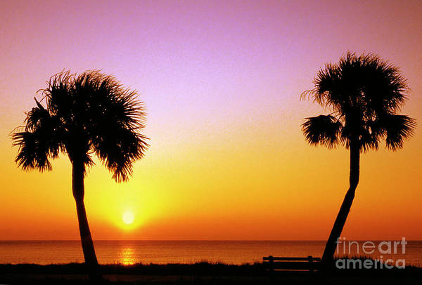 Photograph - Jekyll Island Sunrise by Thomas R Fletcher