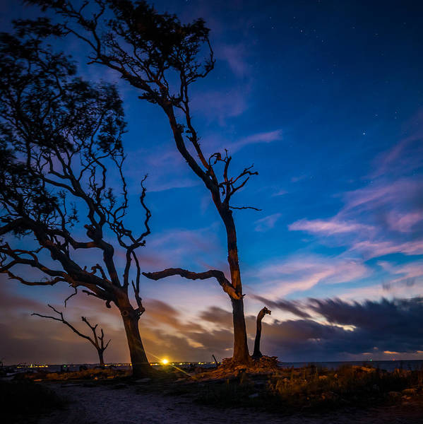 Photograph - Jekyll Twilight Stars by Chris Bordeleau
