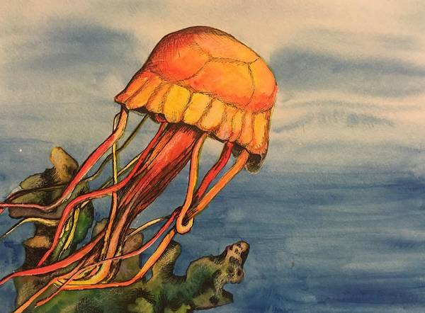 Painting - Jellyfish  by Mastiff Studios