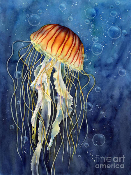 Wall Art - Painting - Jellyfish by Hailey E Herrera