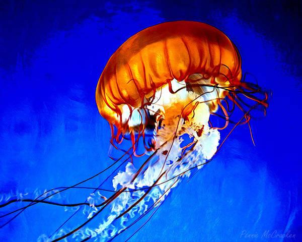 Digital Art - Jellyfish by Pennie McCracken