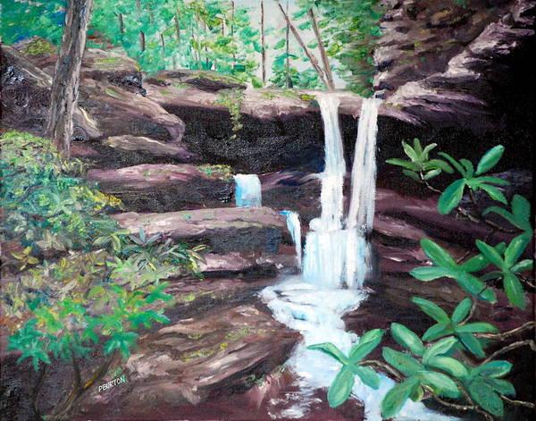 Painting - Jenny Falls by Phil Burton