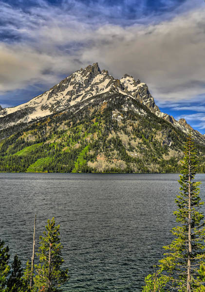 Photograph - Jenny Lake Grand Teton National Park by Dan Sproul