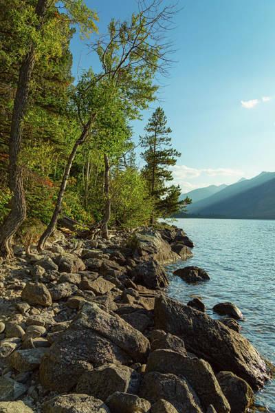 Photograph - Jenny Lake Teton Coast by James BO Insogna