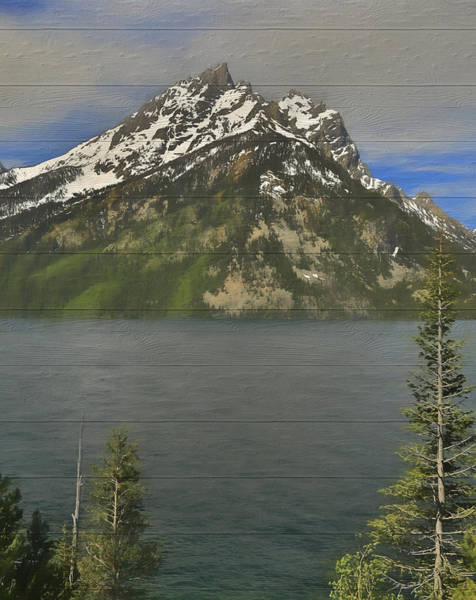 Spring Mountains Mixed Media - Jenny Lake Wood Panels by Dan Sproul