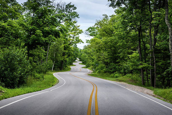 Photograph - Jens Jensen's Winding Road by Randy Scherkenbach