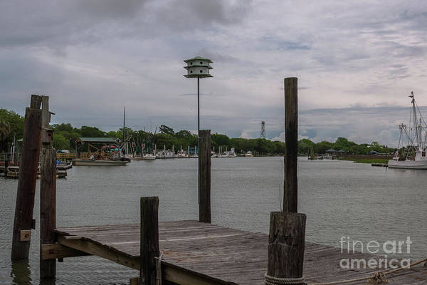 Photograph - Jeremy Creek Dockside In Mcclellanville South Carolina  by Dale Powell
